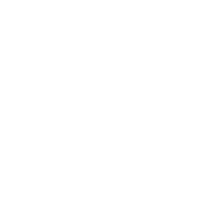 City Map Rendering